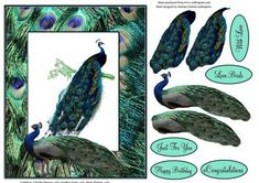 Pair Of Peacocks with Decoupage on Craftsuprint - Add To Basket!