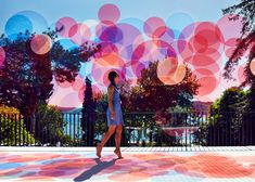 Paul Cocksedge transforms Istanbul sea view with installation of colourful circles.