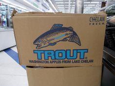Washington Apple, Washington State, Big Fish, Trout, Paper Shopping Bag, Apples, Twitter, Box, Boxes
