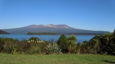 Lake Rotoaira and Mount Tongariro, New Zealand New Zealand Image, Vineyard, Mountains, Nature, Travel, Outdoor, Outdoors, Viajes, Traveling