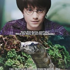 Like and Share if you agree!        #HarryPotter #Potter #HarryPotterForever
