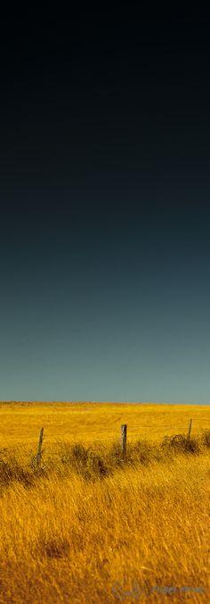 Hay paddock, Lancelin, Western Australia - by photographer Nigel Moyes. Earth Color, Rule Of Thirds, Western Australia, Perth, Landscapes, Colours, Sunset, Canvas, World