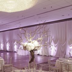 Ivory one pin wall drape, rented for a Chicago wedding reception