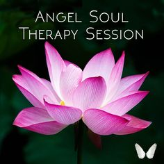 Angel Soul Therapy sessions can help us remove blocks and heal all areas of our life. Andrea Dombecki and her angel team will work with you to assist you with anything from healing grief to finding courage to move forward towards our dreams!