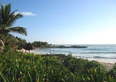"""View from """"palapa""""a week by the sea and Yoga."""