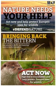 #DefendNature   Gloucestershire Wildlife Trust Lgbt Rights, Derbyshire, Conservation, Acting, Trust, Sisters, Wildlife, Bring It On, News
