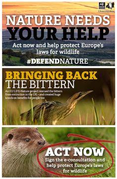 #DefendNature | Gloucestershire Wildlife Trust