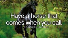 Un completed horse bucket-list stuff
