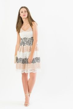 f2a8575c4efcf Suzy Shier Multi-tonal Lace Skater Dress