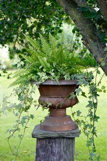 backyard urns