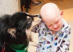 St. Jude patient Kaiden and gets an affectionate hello from his furry friend Joiku during the St. Jude Doggy Daze.