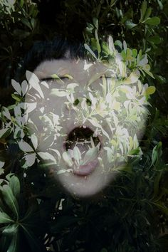 korean art photography - Google 검색