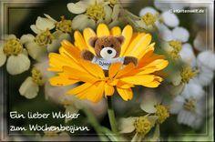 Ein lieber Winker zum Wochenbeginn. Animierte Grußkarte Wochenanfang mit Djabbi in Ringelblume