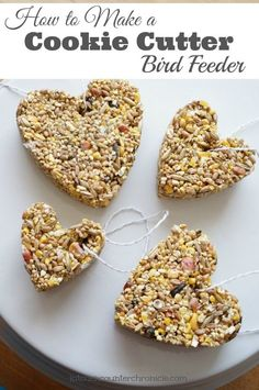 How to make a cookie cutter bird feeder - A simple project for kids. Spread the love to the winter birds with a bird feeder made of bird seed. Complete step by step instructions. Make them any shape y (Cool Art For Kids) Diy Garden Projects, Arts And Crafts Projects, Garden Crafts, Easy Projects, Projects For Kids, Garden Art, Garden Totems, Garden Kids, Preschool Projects