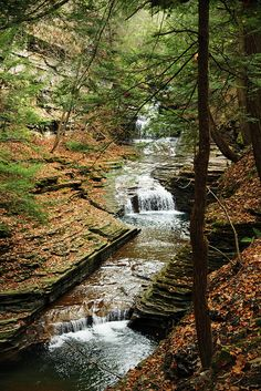 Buttermilk Falls State Park- Ithaca, New York  :) http://nysparks.com/parks/151/