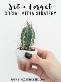 4 easy methods to set and forget your social media strategy for the week or even… Social Media Calendar, Social Media Tips, How To Start A Blog, How To Find Out, I Wish I Knew, Online Programs, Blogging For Beginners, Decluttering, How Are You Feeling