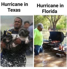 Memes, Florida, and Hurricane: Hurricane in Texas Hurricane in Florida Meanwhile in Florida. Funny Shit, Funny New, Stupid Funny Memes, Haha Funny, Funny Stuff, 9gag Funny, Diy Funny, Funny Fails, Funny Things