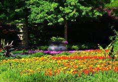 Garden, Dallas Arboretum, April In The Garden, Spring In The Garden, Dallas