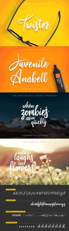 A beautifully handwritten font with clean lines.