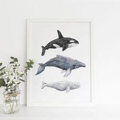 Whale Art Print - Orca, Humpback and Beluga - Nautical Nursery Printable Wall Art Whale Nursery, Nautical Nursery, Animal Nursery, Nursery Art, Ocean Nursery, Nursery Decor, Nursery Paintings, Nursery Ideas, Room Ideas