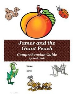 FREE James and the Giant Peach Reading Comprehension Activity Guide! Great for guided reading groups or independent work for students!