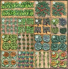 Square foot garden layout ideas - can't wait for spring!- great layout and actually veggies I will plant! #squarefootgardening