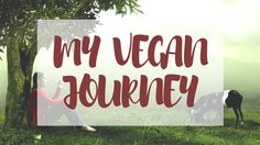 This is where 10 years as a vegan has taken me from start to finish.