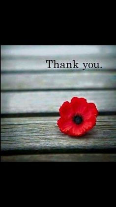 On remembrance day members of the armed forces soldiers sailors on remembrance day members of the armed forces soldiers sailors and airmen are commemorated veterans day usa pinterest powerful words publicscrutiny Gallery