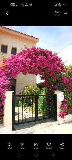 Diy Design, Mailbox Landscaping, Landscaping Ideas, Garden Fence Panels, Climbing Flowers, Empire Romain, Diy Trellis, Garden Arches, Garden Steps