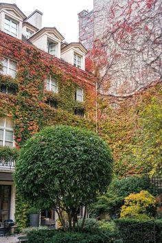 Named #36 on Conde Nast's Best Hotels in the World list: Pavillon de la Reine of Paris