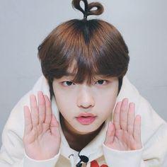 Love K, Little Babies, Boy Groups, Sons, Kpop, Cute, Produce 101, Korea, Drama