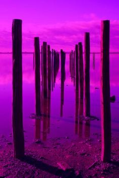 Purple water and sky