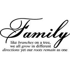 This inspirational vinyl art applies to smooth surfaces like walls, glass, tile and more. It features the saying 'Family like branches on a tree, we all grow in different directions, yet our roots rem