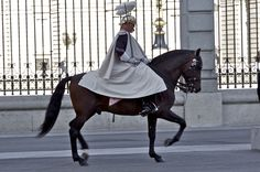 https://flic.kr/p/beQBDi | ON PARADE | Changing of the guard outside the royal palace madrid  january 2012