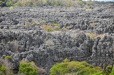 Ankarana, Northern Madagascar