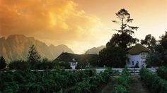 Virgin Limited Edition Buys Mont Rochelle Hotel & Vineyard in Franschhoek, South Africa