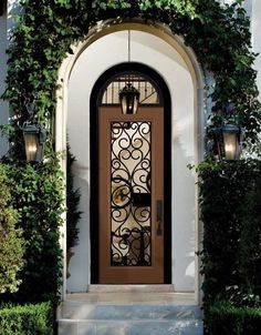 Modern Kitchen Entrance Doors foret doors : modern front door with custom stainless steel pull