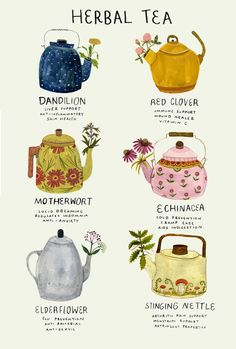 Tea flavours and their corresponding teapots | illustration