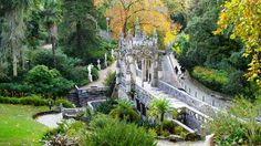 Jardim da Quinta da Regaleira Sintra Portugal Garden Must See Sintra Portugal, Visit Portugal, Portugal Tourism, Tourist Places, Heaven On Earth, Landscape Architecture, Photo Art, The Good Place, Beautiful Places