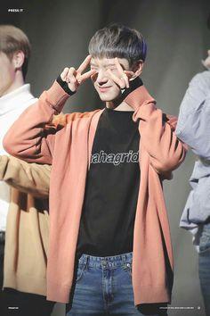 yes,, you are nomu cute Winwin, Jaehyun, Taeil Nct 127, Nct U Members, Lee Young, Ten Chittaphon, Nct Ten, Fandom, Sm Rookies