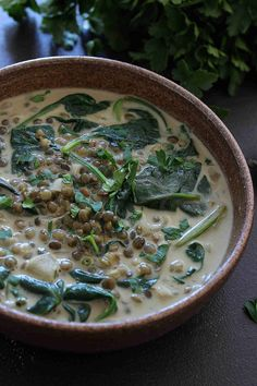 Lentils & spinach coconut milk soup – Travel & Food and Drink coconut milk Lentils & spinach coconut milk soup Soup Recipes, Vegetarian Recipes, Dinner Recipes, Cooking Recipes, Healthy Recipes, Vegetarian Soup, Lentil Recipes, Milk Recipes, Coconut Milk Soup