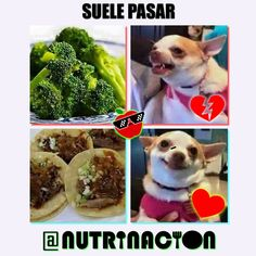 NUTRINACION (@NUTRINACIONcom) | Twitter