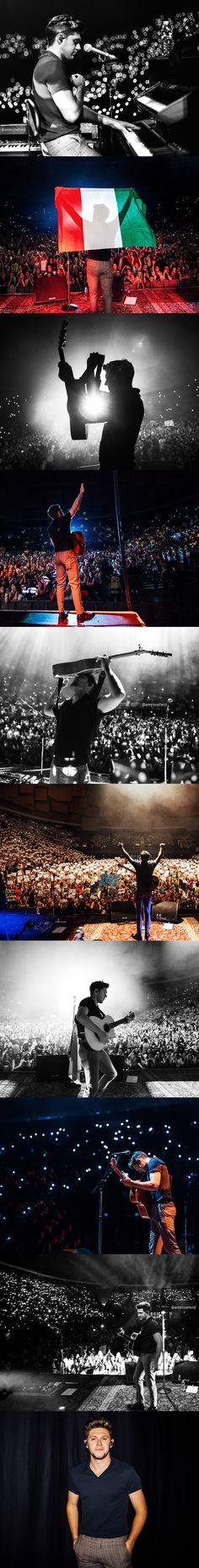 Niall Horan | 5.6.18 Bologna, Italy | emrosefeld |