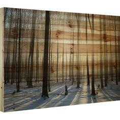 Parvez Taj 'Papineau' by Parvez Taj Painting Print on Natural Pine Wood