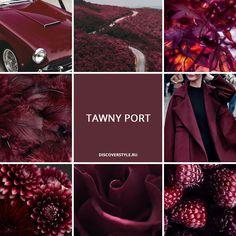 цвет осень зима 2017 2018 pantone бордовый винный Tawny Port color fall winter