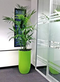 You can be green and 'green' all at once. In fact, you can be any colour you want! Why not match your corporate colours! Visit www.greendesign.com.au