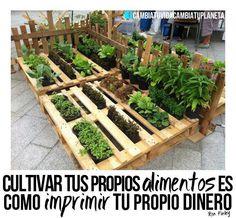 Huerto, Jardin, Alimentos, Organico. Pallets
