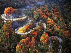 Curvy Road In Fall, The Great Smoky Mountains, Near Chattanooga, Tennessee