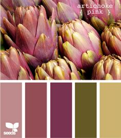 artichoke pink design seeds hues tones shades  color palette, color inspiration cards #hues #tones #shades #colorpalette #colorinspiration #designseeds