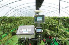 국제농기계박람회 - Google 검색